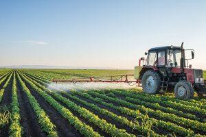 256 5 02 300x200 - Pametno kmetovanje: trajnostna odprava plevela s polj