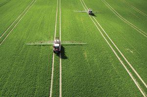 256 5 03 300x199 - Pametno kmetovanje: trajnostna odprava plevela s polj