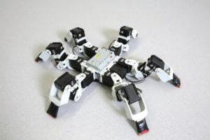 SE262 9 01 300x200 - Hitro vrteči se pajek navdihuje novo generacijo robotov